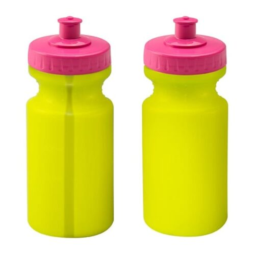 Viz Bottle 500ml