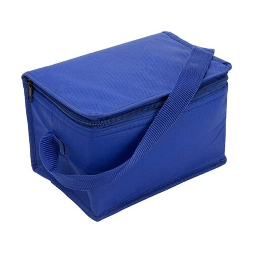 Nonwoven Small Cooler bag
