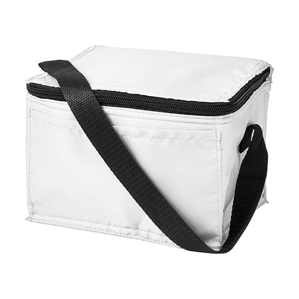 Polyester 210D Rectangular Cooler bag