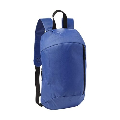 Polyester 210D Backpack