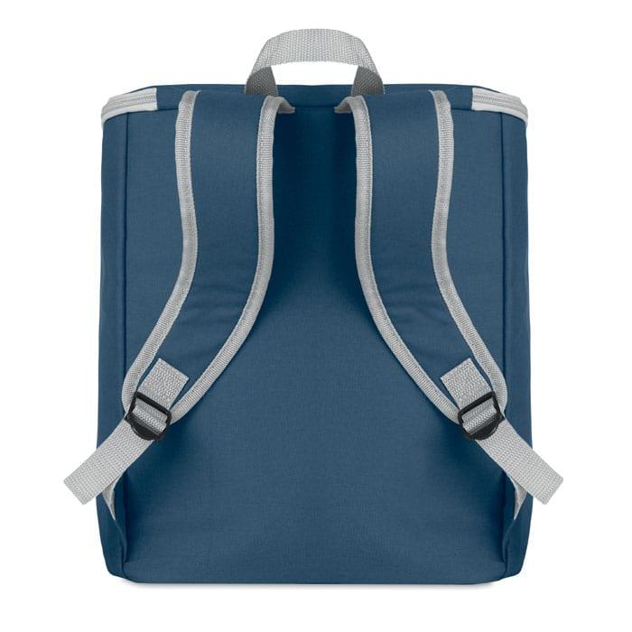 Cooler bag and backpack